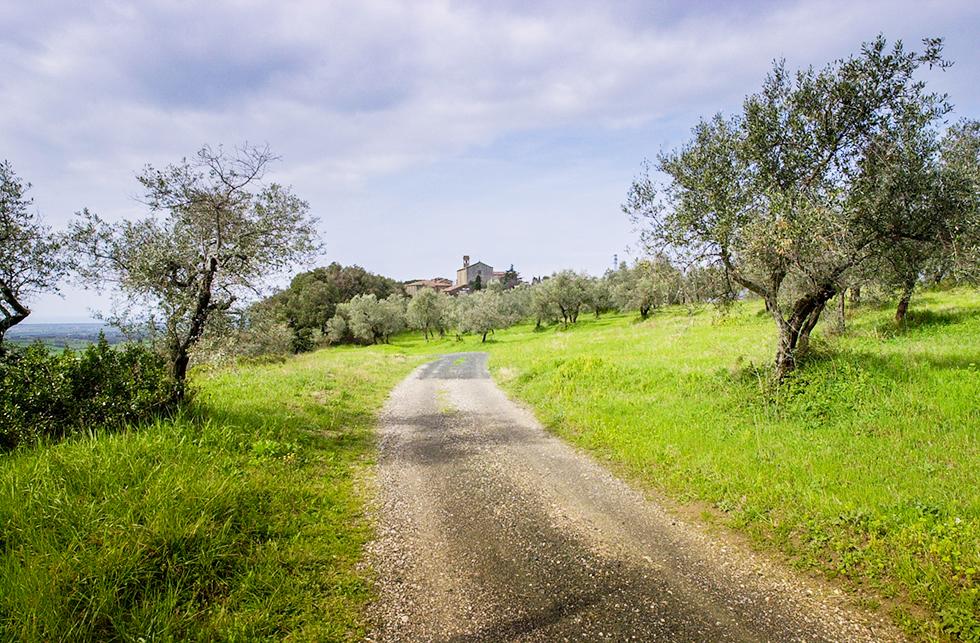acheter terrain constructible var par maisons promosud